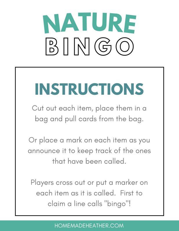 nature bingo instructions