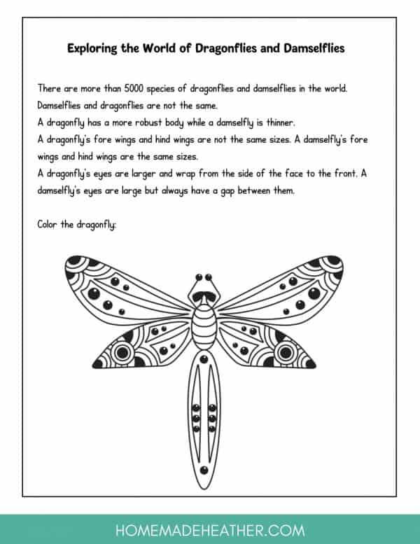 Backyard Dragonfly Printable