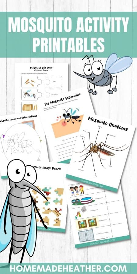 Free Mosquito Activity Printables
