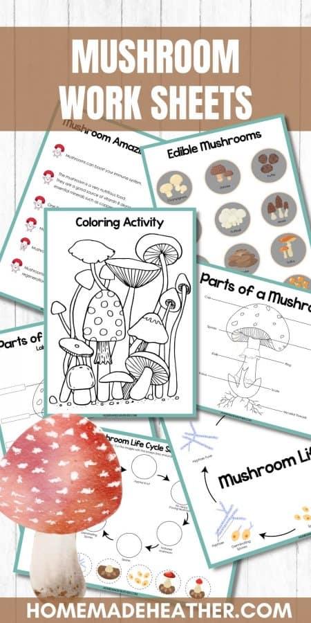 Mushroom Printable Work Sheets