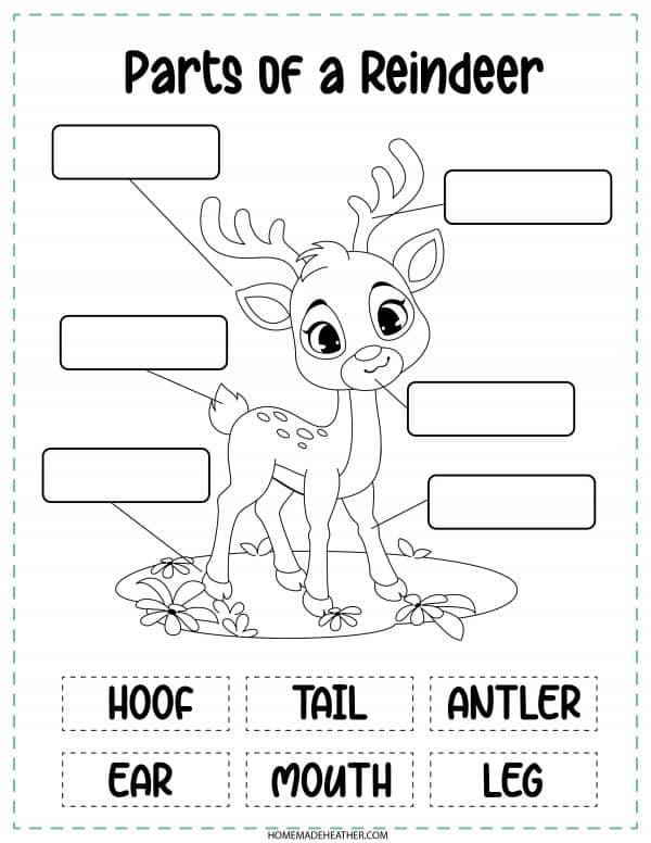 Parts of a Reindeer Printable
