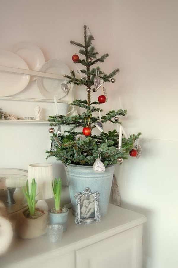 Brilliant Small Christmas Trees