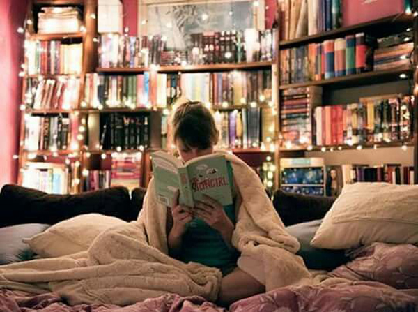 20 Awesome Bedroom Library Decor Ideas Home Design And