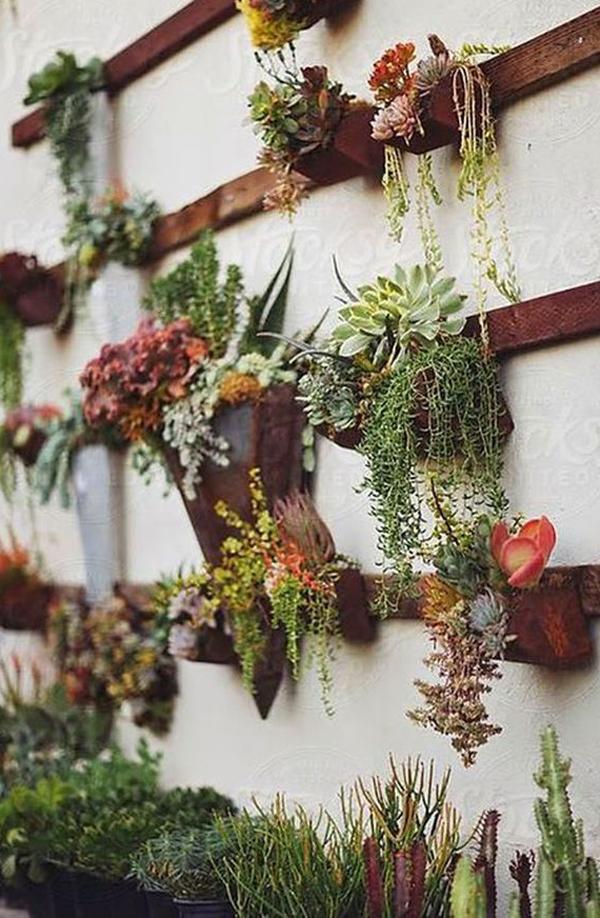 Design My Garden Ideas