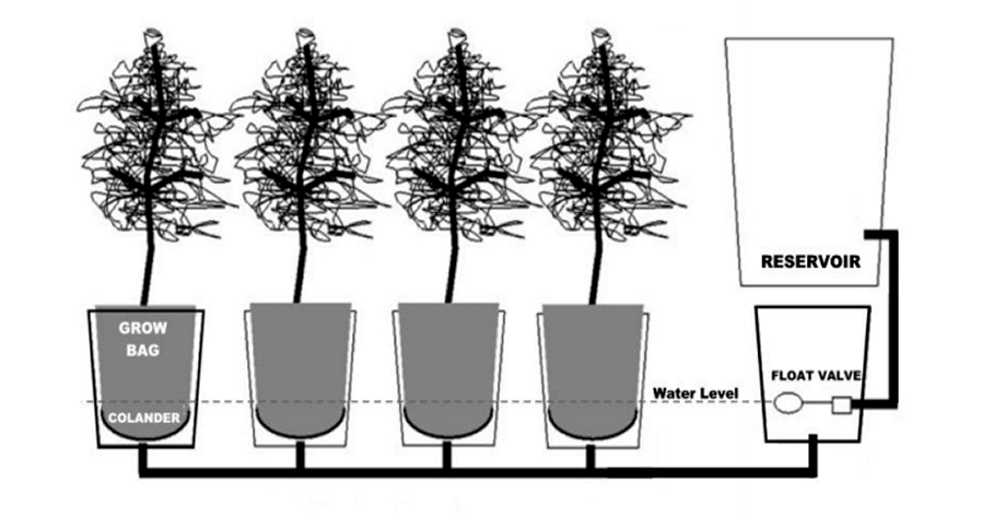 How Build Garden Drainage System
