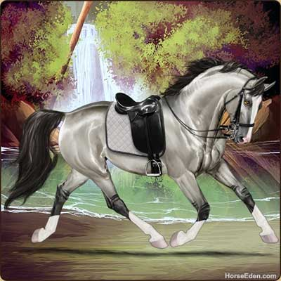 realistic horse breeds # 78