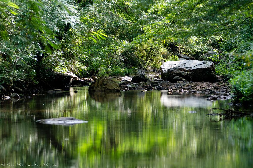 Summer At The Fordyce Ricks Pond And Gulpha Creek Hike