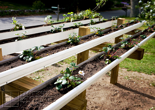 Large Raised Garden Plans