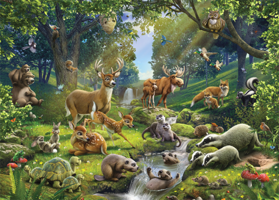 Interesting facts about forest animals
