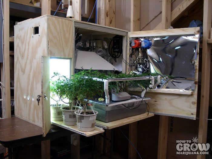 Hydroponic Box Grow Making