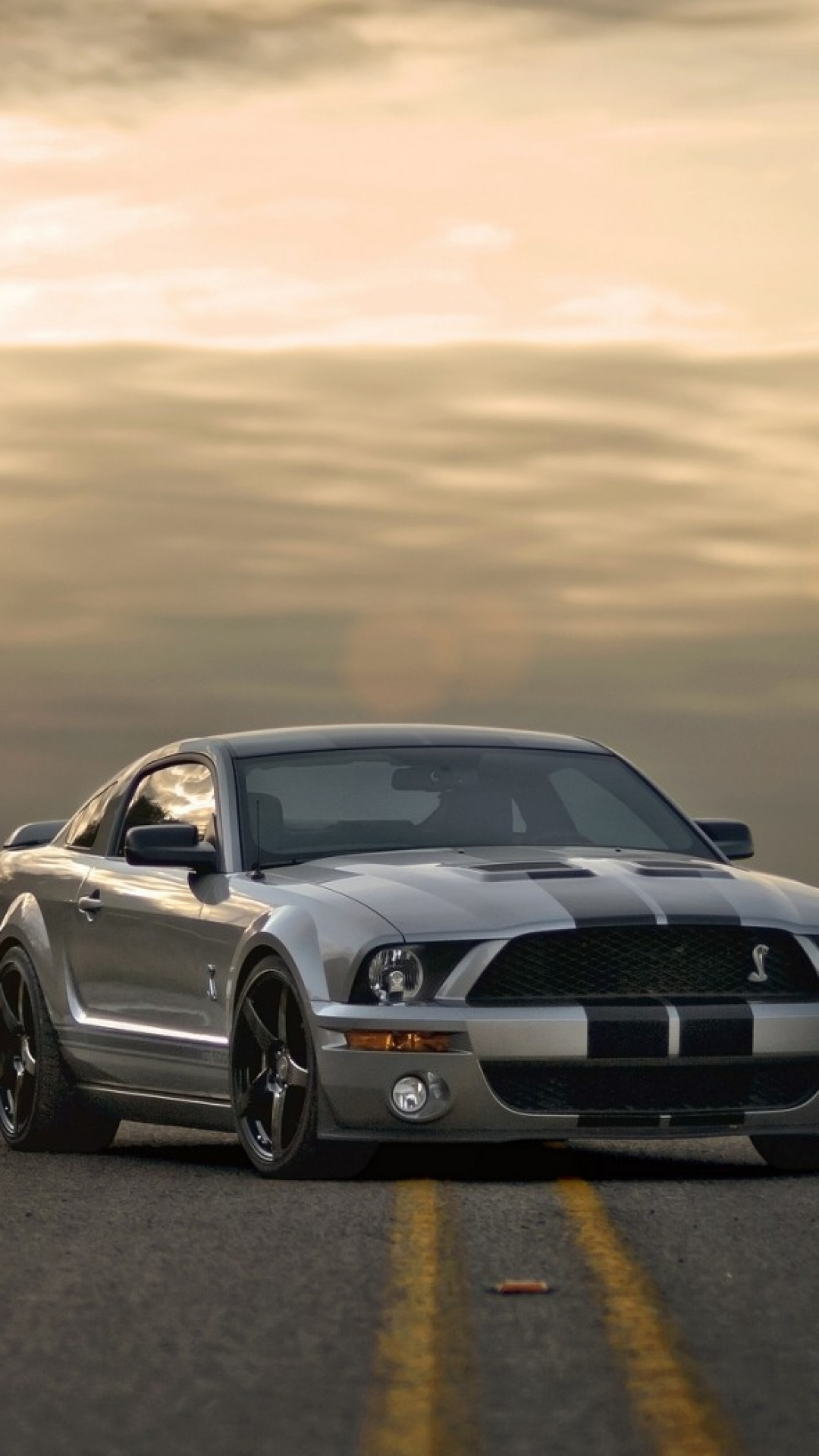 Mustang Valentines Day