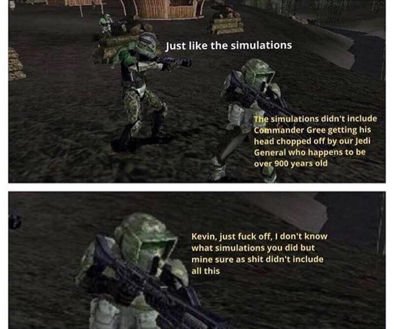 Just Simulations