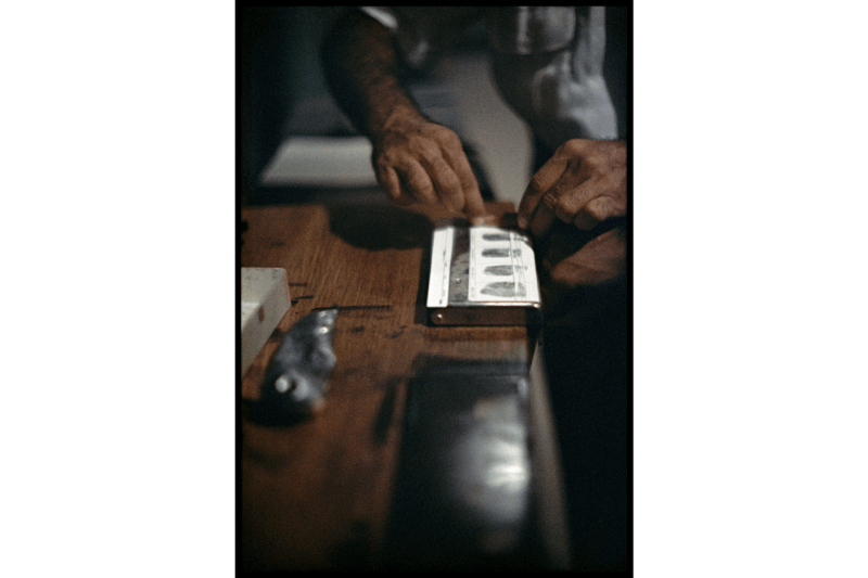 gordon parks the atmosphere of crime book moma museum of modern art equal justice initiative