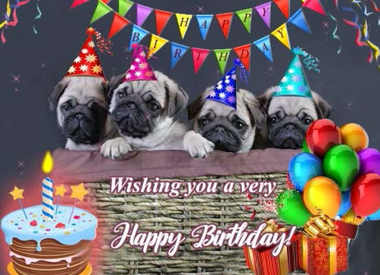 Special Hugs With Pugs Free Birthday Wishes Ecards