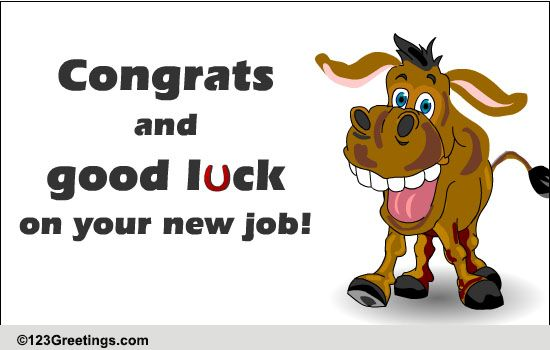 Wishes Funny Good Job New Luck
