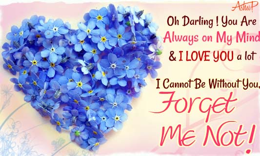 Forget Me Not My Love Free Forget Me Not Day Ecards