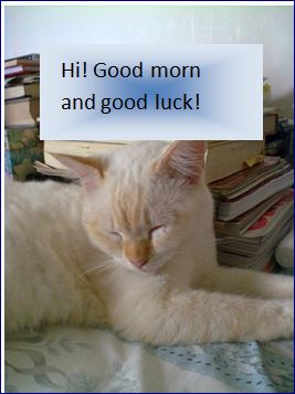 Good Morning And Good Luck Free Good Morning Ecards