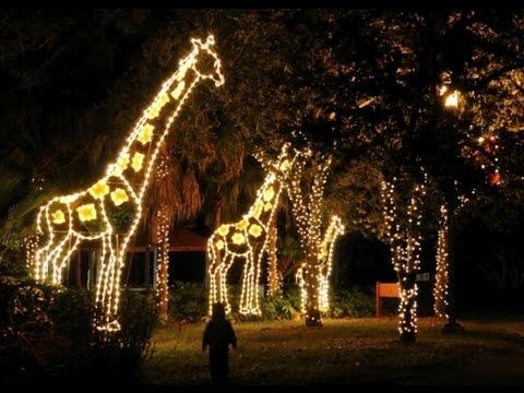 christmas lights miami # 1