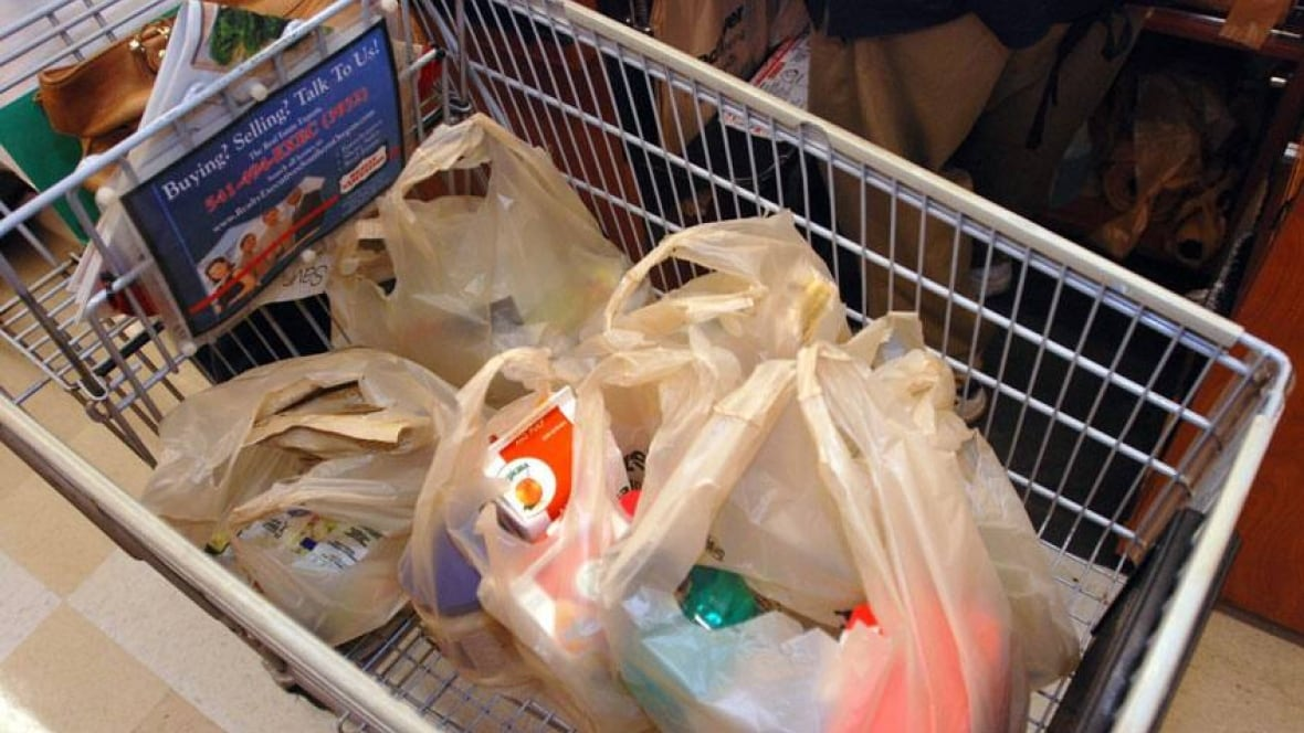 First Online Grocery Shop