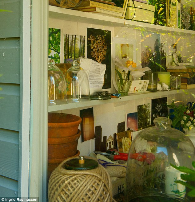 Water Plants Inside Home