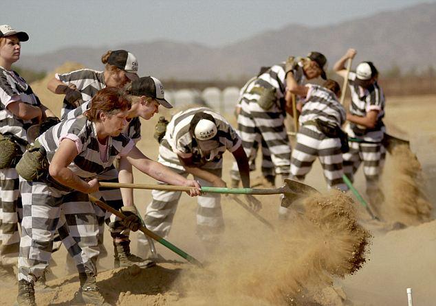 Gang Maricopa Chain County Jail