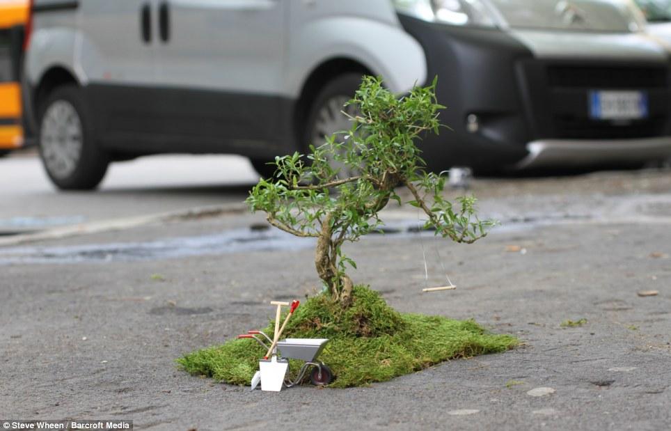 Sprucing Up The Streets Urban Gardener Brightening Up