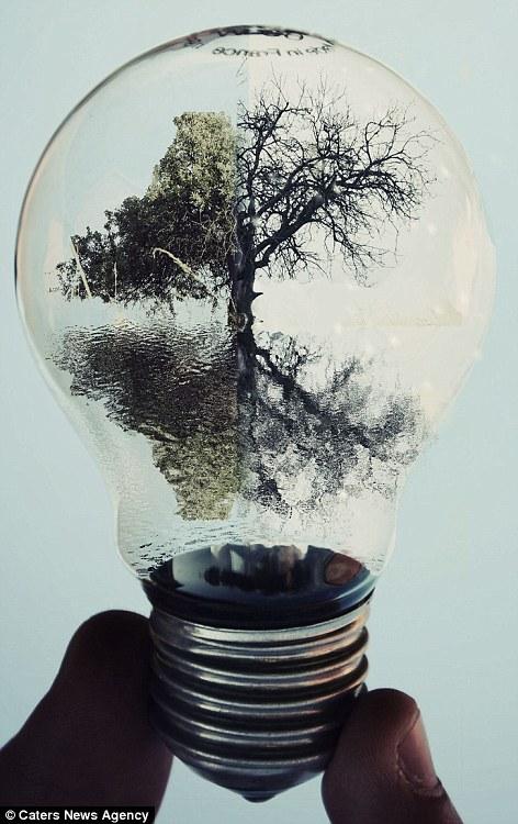 How Do Cfl Light Bulbs Work