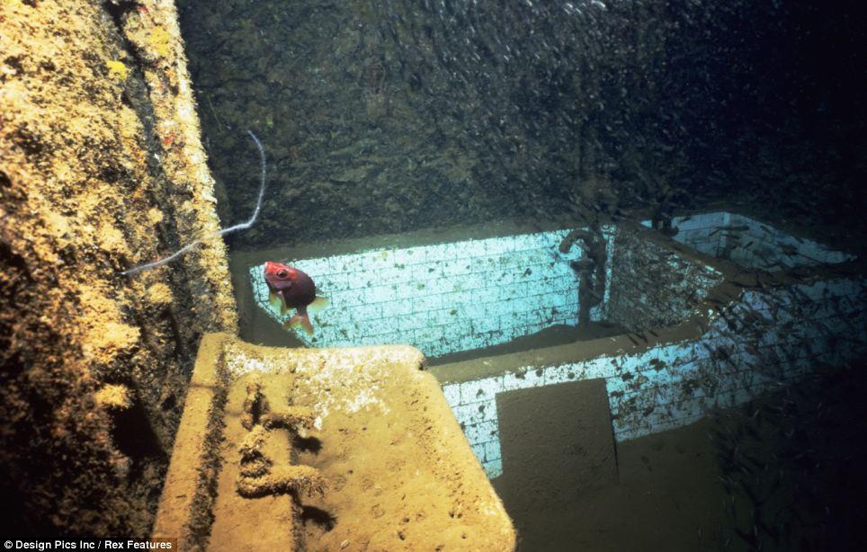 Worlds Biggest Shipwreck