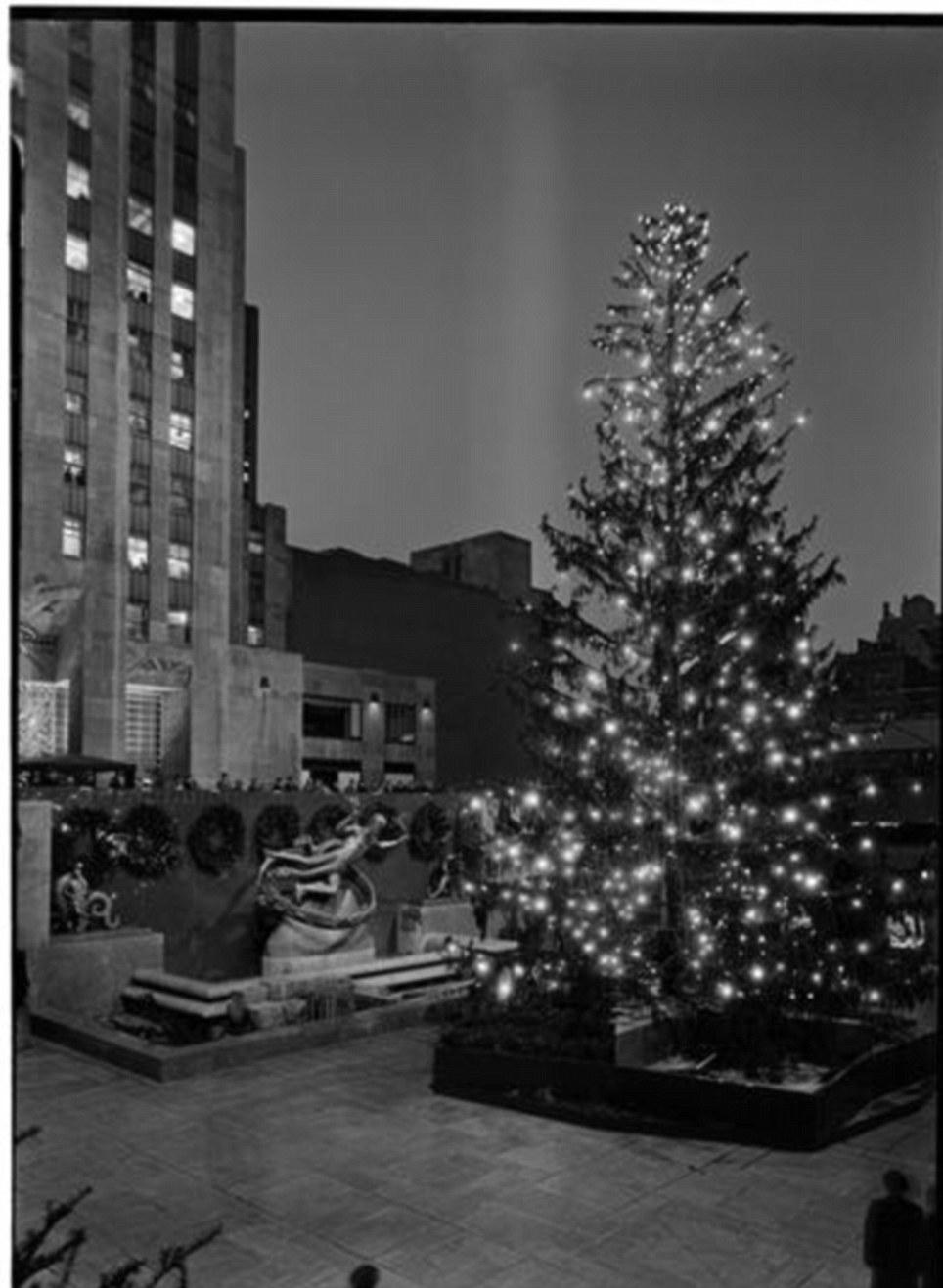 Christmas Lights New York