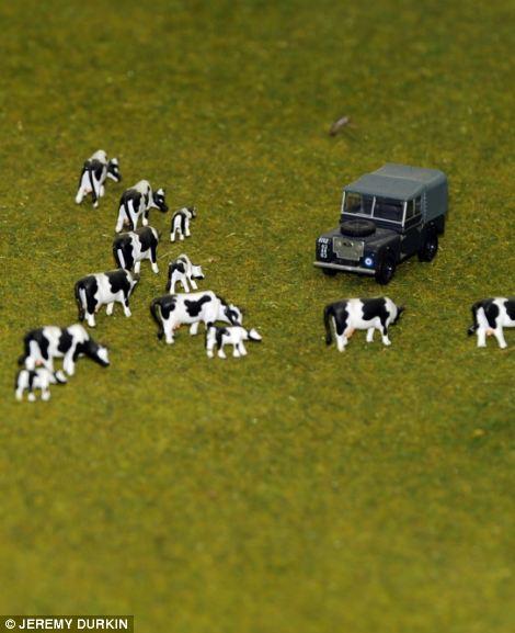 Europe Train Miniature Display