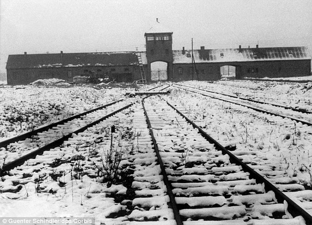 Camps Them Chambers Concentration Holocaust Gas People