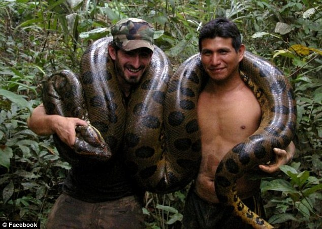Discovery Channel urged not to air man being eaten alive by snake | Daily Mail Online