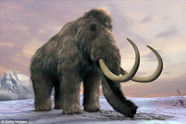 Extinct Prehistoric Elephants