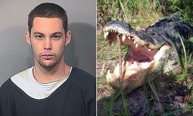Florida 'burglar' Matthew Riggins is eaten by an ALLIGATOR ...