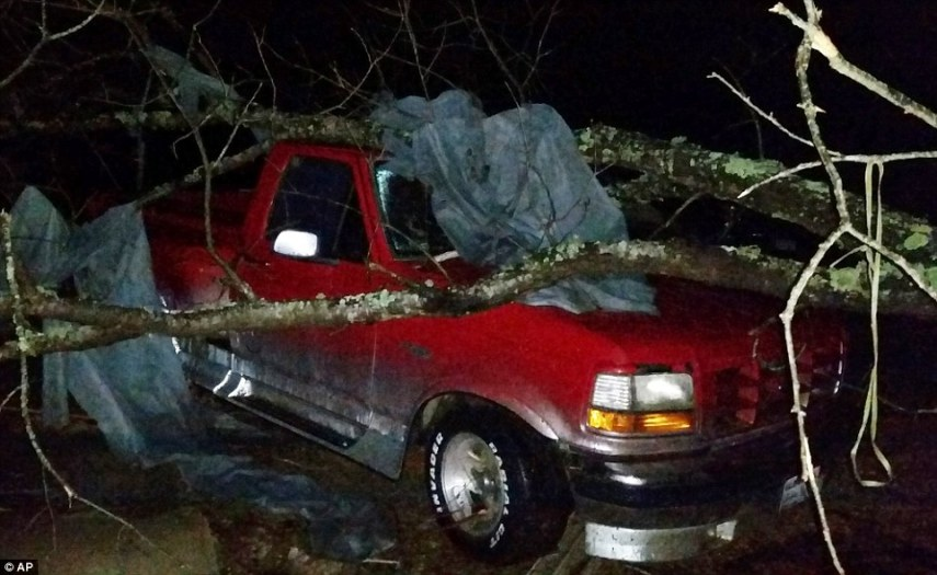 Michaela Remus killed by Christmas storms that sent a tree through     A fallen tree rests atop a pickup truck in Holly Springs  Mississippi   after a