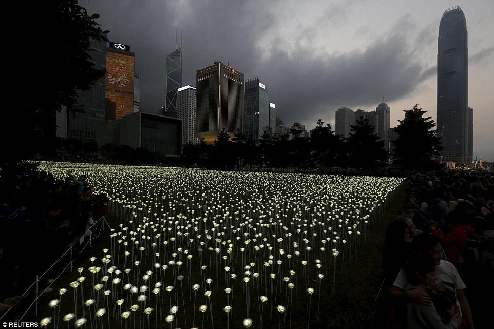 Led Flower Lights