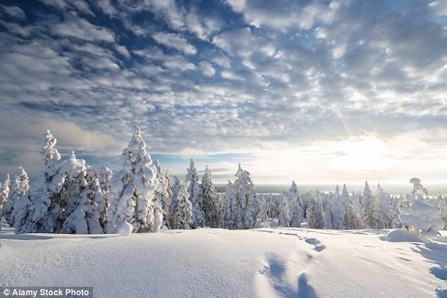 Finnish Northern Lights