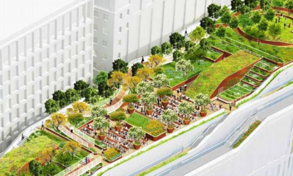 Landscape Design Online