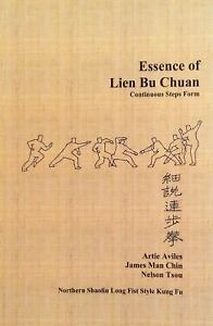 Essence of Lien Bu Chuan   Northern Shaolin Long Fist Style Kung Fu     Stock photo