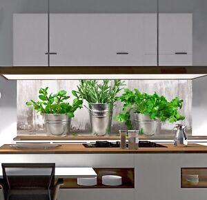 Küchenrückwand Motiv SP341 Spritzschutz Fliesenspiegel NEU AcrylGlas GlasLook eBay