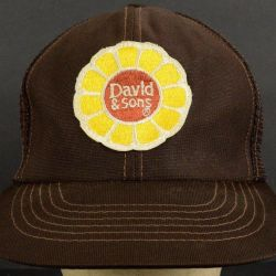 22d31f01 David & Sons Sunflower Snapback Brown Trucker Hat Cap With Snapback
