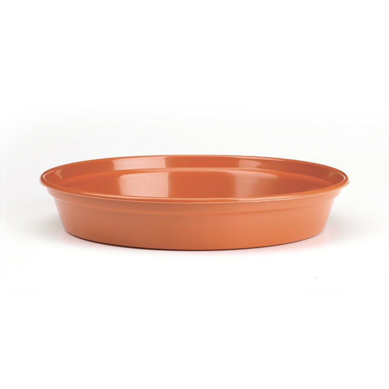 Terracotta Plant Pots And Saucers