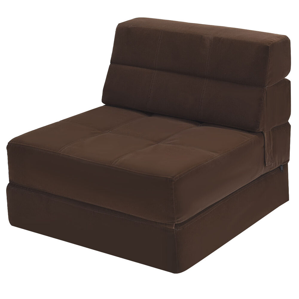 Fold Out Sleeper Couch