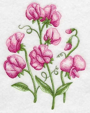 sweet pea embroidery # 12