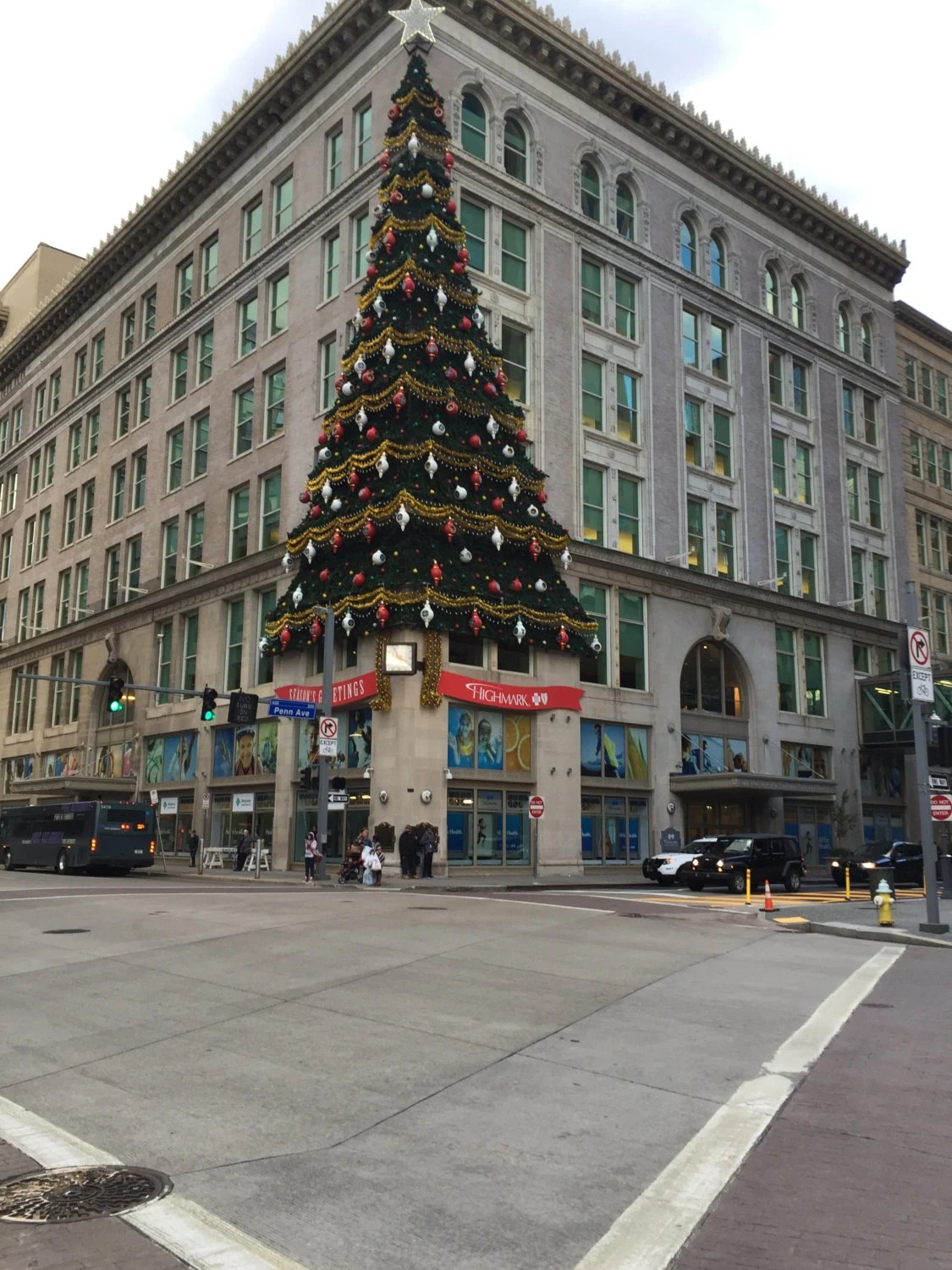 Downtown Pittsburgh Famous Tree/Current Photo of Old ...