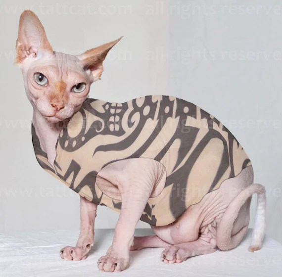 Sphynx Cat Clothes Sugar Skeleton Tattcat™ Chinese Crested ...