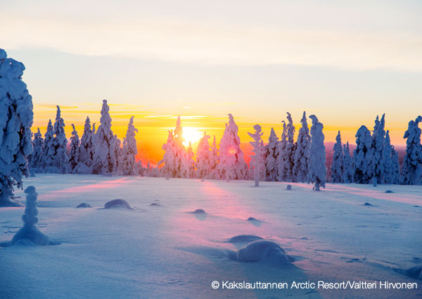 Finland Northern Lights Tours