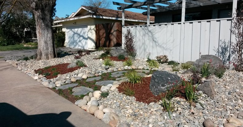 Fresno Backyard Landscape
