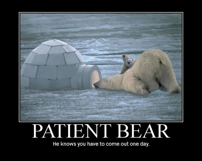 bear wrongs patiently - 680×544