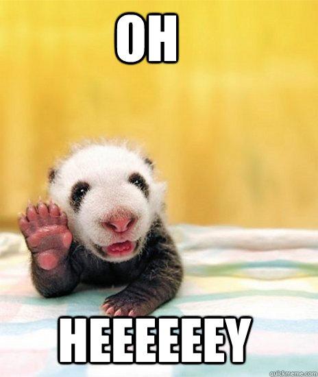 oh heeeeeey - Baby Panda